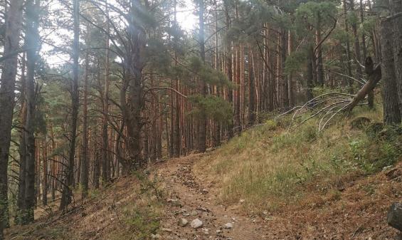 Próxima Iberika: 3 OCT. Piedrafita de Jaca